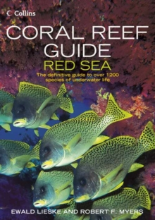 Coral Reef Guide Red Sea, Paperback Book