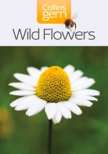 Wild Flowers, Paperback Book