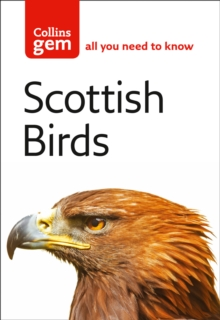 Scottish Birds, Paperback Book