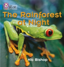 The Rainforest at Night : Band 04/Blue, Paperback / softback Book