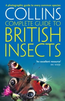 British Insects : A Photographic Guide to Every Common Species, Paperback / softback Book