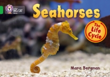 Seahorses : Band 05/Green, Paperback Book
