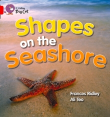 Shapes on the Seashore, Paperback Book