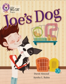 Joe's Dog : Band 09 Gold/Band 12 Copper, Paperback / softback Book