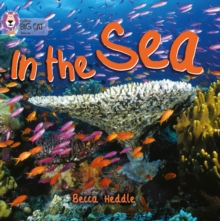 In the Sea : Band 01b/Pink B, Paperback / softback Book