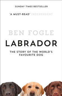 Labrador : The Story of the World's Favourite Dog, Paperback Book