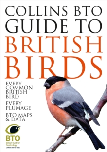 Collins BTO Guide to British Birds, Paperback Book