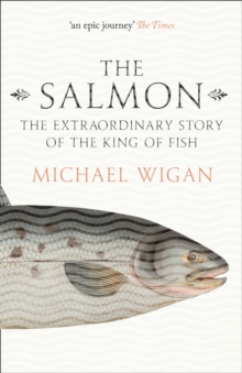 The Salmon : The Extraordinary Story of the King of Fish, Paperback Book
