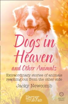Dogs in Heaven: and Other Animals : Extraordinary Stories of Animals Reaching out from the Other Side, Paperback Book