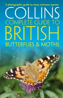 British Butterflies and Moths, Paperback / softback Book