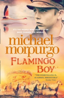 Flamingo Boy, Paperback / softback Book