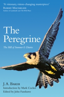 The Peregrine : The Hill of Summer & Diaries: the Complete Works of J. A. Baker, Paperback Book