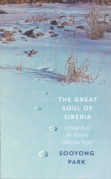 The Great Soul of Siberia : In Search of the Elusive Siberian Tiger, Hardback Book