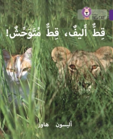 Tame Cat, Wild Cat : Level 8, Paperback / softback Book