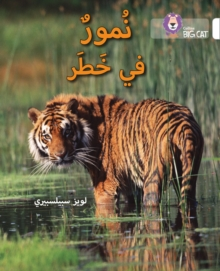 Tigers in Danger : Level 10, Paperback Book