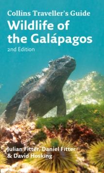 Wildlife of the Galapagos, Paperback / softback Book