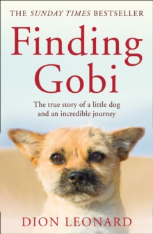 Finding Gobi (Main edition) : The True Story of a Little Dog and an Incredible Journey, Paperback / softback Book