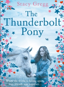 The Thunderbolt Pony, Hardback Book