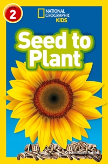 Seed to Plant, Paperback Book