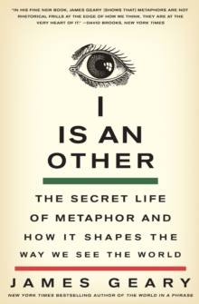 I Is an Other : The Secret Life of Metaphor and How It Shapes the Way We See the World, Paperback / softback Book