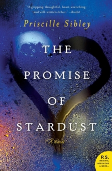 The Promise of Stardust : A Novel, Paperback / softback Book