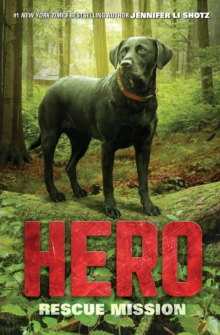 Hero: Rescue Mission, Paperback / softback Book