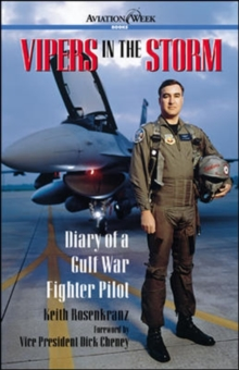 Vipers in the Storm: Diary of a Gulf War Fighter Pilot, Paperback Book