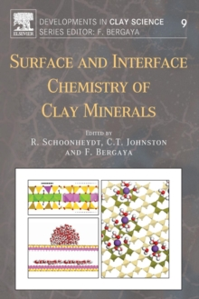 Surface and Interface Chemistry of Clay Minerals : Volume 9, Paperback / softback Book