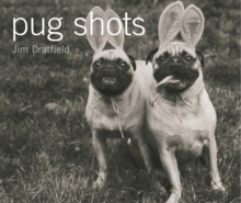 Pug Shots, Paperback / softback Book