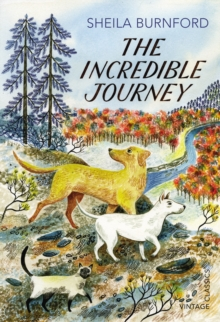 The Incredible Journey, Paperback Book