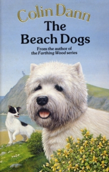 The Beach Dogs, Paperback Book