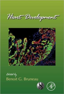 Heart Development : Volume 100, Hardback Book