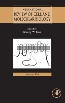 International Review of Cell and Molecular Biology : Volume 304, Hardback Book