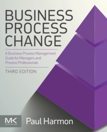 Business Process Change, Paperback Book