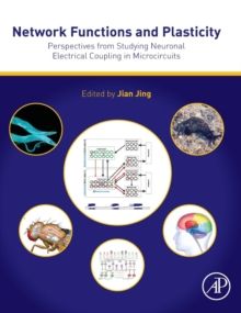 Network Functions and Plasticity : Perspectives from Studying Neuronal Electrical Coupling in Microcircuits, Hardback Book