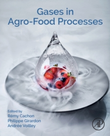 Gases in Agro-food Processes, Paperback / softback Book