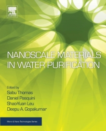 Nanoscale Materials in Water Purification, Paperback / softback Book
