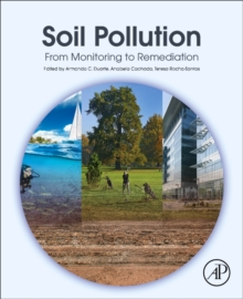 Soil Pollution : From Monitoring to Remediation, Paperback / softback Book