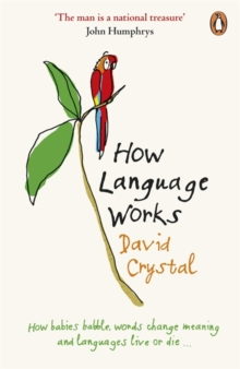 How Language Works, Paperback / softback Book