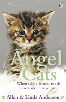 Angel Cats : When feline friends touch hearts and change lives, Paperback / softback Book