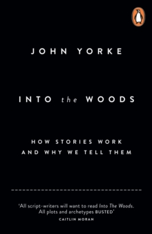 Into The Woods : How Stories Work and Why We Tell Them, Paperback / softback Book