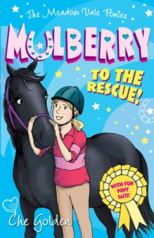 The Meadow Vale Ponies: Mulberry to the Rescue!, Paperback / softback Book