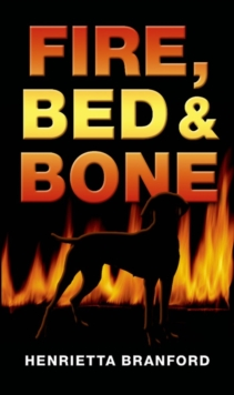 Rollercoasters: Fire, Bed and Bone Reader : Reader, Paperback Book