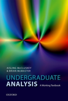 Undergraduate Analysis : A Working Textbook, Paperback / softback Book