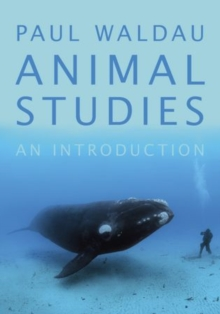 Animal Studies : An Introduction, Paperback / softback Book