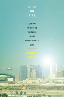 Bird on Fire : Lessons from the World's Least Sustainable City, Paperback / softback Book