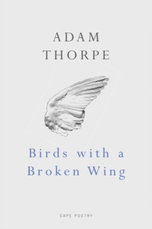 Birds With A Broken Wing, Paperback / softback Book