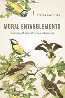 Moral Entanglements : Conserving Birds in Britain and Germany, Paperback / softback Book