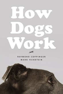 How Dogs Work, Paperback / softback Book