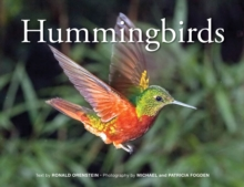 Hummingbirds, Paperback / softback Book